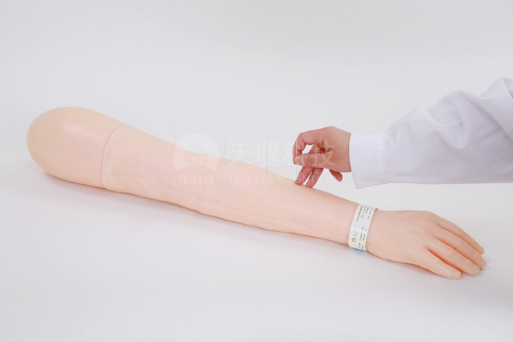 针刺训练手臂模