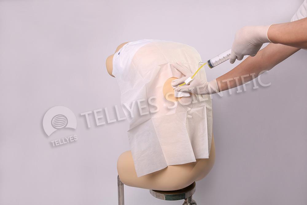 成人胸腔穿刺模型