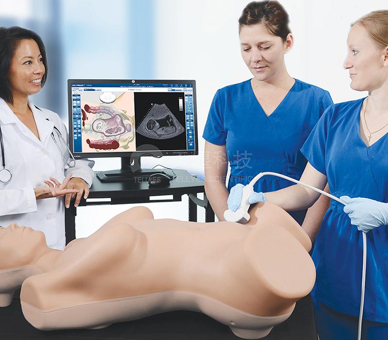 妇产科超声虚拟训练系统
